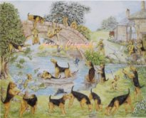 Riverside - Airedale - Welsh Terrier